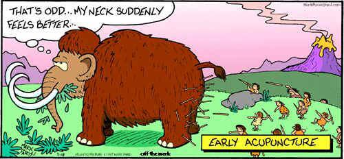 akuelefant